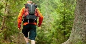 Foto di un escursionista in mezzo al bosco